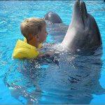 Дельфинотерапия в Харькове