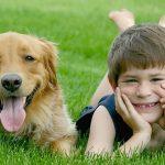 Как домашнее животное повлияет на ваших детей